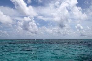 sea-fishing3